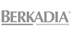 Logo Berkadia